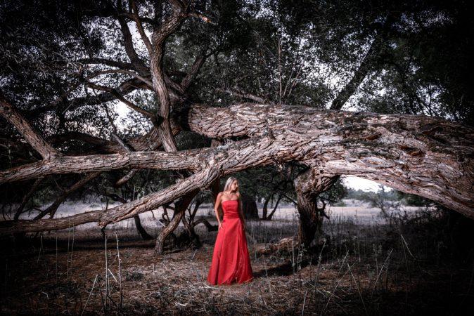 Portrait Frau Female rotes Abendkleid Baum Natur